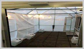 Covered Walkway From Temporary Kitchen